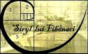 """Tehnica de pariere """"Sirul lui Fibonacci"""""""