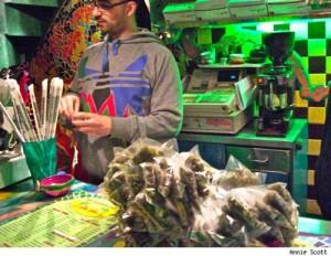 Amsterdam Cannabis cup