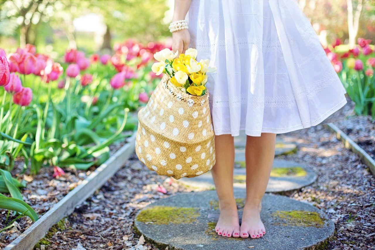 Flori frumoase care nu trebuie ratate in gradina ta